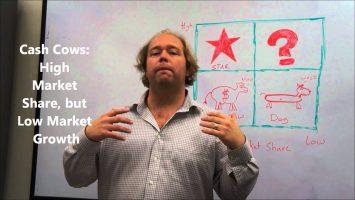Portfolio Analysis Explained The BCG Matrix