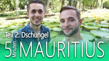 Mauritius In 5 Minuten Teil 22 Mauritius Dschungel Abenteuer