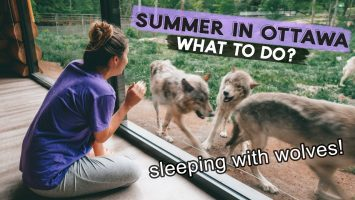 OTTAWA In The SUMMER The BEST Things To DO Sleeping With Wolves At Parc Omega