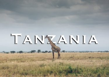 Great Africa Safari In Tanzania Tarangire National Park