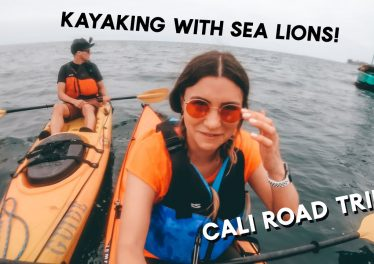 Kayaking With SEA LIONS California ROAD TRIP Prt 2 Santa Barbara Los Angeles